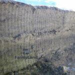 Режущие захваты V-LOAD Shear Top - Фото № 4